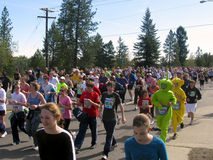 Spokane Bloomsday Runners 2010 near Mile 2. Spokane Bloomsday Runners on Government Way near Mile two. Image includes two runners dressed as Telly-Tubbies Stock Image
