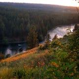 Spokane flod Royaltyfria Bilder