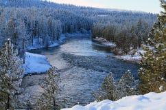 Spokane flod som flödar till och med en snöig skog Arkivbild