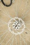 Spoke della bicicletta Fotografie Stock