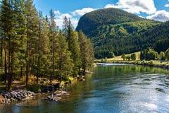Spokojna halna rzeka w Norwegia obrazy royalty free