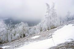 spokojna krajobrazowa halna zima Zdjęcia Royalty Free
