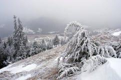 spokojna krajobrazowa halna zima Fotografia Royalty Free