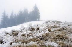 spokojna krajobrazowa halna zima Zdjęcia Stock