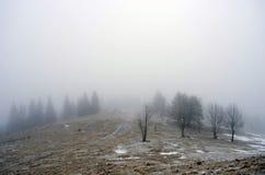 spokojna krajobrazowa halna zima Zdjęcie Royalty Free