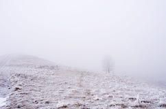 spokojna krajobrazowa halna zima Obraz Royalty Free