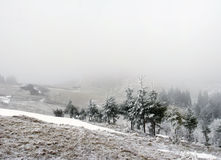 spokojna krajobrazowa halna zima Obraz Stock