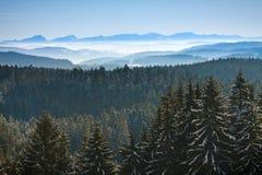 spokojna krajobrazowa ranek góry zima fotografia royalty free