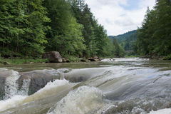 Spokojna mała rzeka w drewnie zdjęcia royalty free