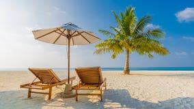 spokojna plażowa scena Egzotyczny tropikalny plaża krajobraz dla tła lub tapety Projekt wakacje wakacje pojęcie Zdjęcie Royalty Free