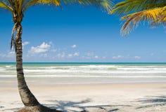 spokojna plażowa scena Obrazy Royalty Free