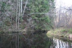 Spokojna rzeka i niebieskie niebo Zdjęcie Royalty Free