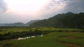 Spokojna rzeka odbija zielonych drzewa otaczających arachidowymi polami zbiory wideo