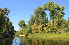 Spokojna rzeka w Północnym Kalifornia zdjęcie stock