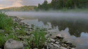 Spokojna rzeka z rozprzestrzeniać gęstą mgłę i kamienie na banku zbiory wideo