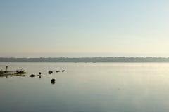 Spokojna scena Panasoffkee jezioro, usa Zdjęcia Stock