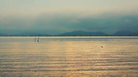 Spokojna scena wschód słońca z niebem nad seascape Cyraneczki i pomarańcze filtr zbiory wideo