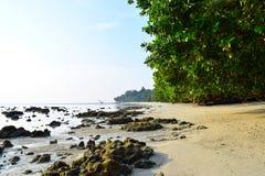 Spokojna Skalista plaża z bujny zieleni mangrowe na Jaskrawym słonecznym dniu - Vijaynagar, Havelock wyspa, Andaman, India zdjęcia royalty free