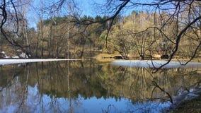 Spokojna wczesna wiosny sceneria zdjęcie wideo