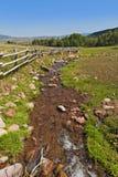 Spokojna zielona kraj scena z małym bieg strumieniem Zdjęcie Stock