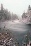 Spokojna zimy scena Zdjęcie Royalty Free