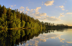 spokojnego jeziora Zdjęcia Royalty Free