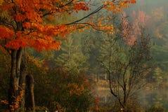 spokojnie jesienią Zdjęcie Stock