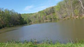 Spokojny i piękny jezioro Obrazy Royalty Free