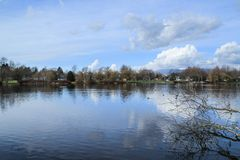 Spokojny i pokojowy jezioro zdjęcia royalty free