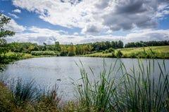 Spokojny jezioro podczas lato dnia Zdjęcie Royalty Free