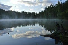 Spokojny jezioro wśród drzew Fotografia Royalty Free