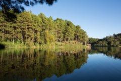 Spokojny krajobraz przy jeziorem z wibrującym niebem, obraz stock