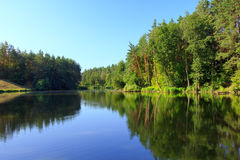 Spokojny krajobraz z jeziorem i sosny lasem Zdjęcia Stock