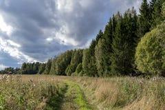 Spokojny lato krajobraz Zdjęcia Royalty Free