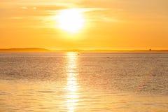 Spokojny piękny złoty zmierzch na morzu tło zieleń opuszczać natury klonowego lato mokry zdjęcie stock