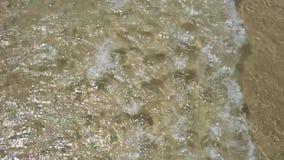 Spokojny przypływ w zwolnionym tempie plaż fale Floripa, Brazylia zbiory