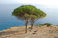 spokojny śródziemnomorski Zdjęcie Stock