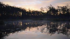 Spokojny ranek lasowym jeziorem zbiory
