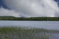 Spokojny reflecton punkt na New Hampshire stawie fotografia royalty free
