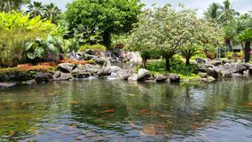 Spokoju ogród Obraz Stock