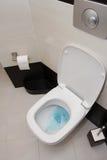 spolad toalett Arkivfoto