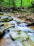 Spolande trappadelstatspark royaltyfri foto