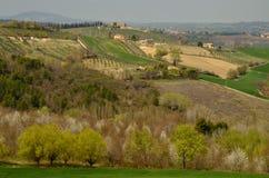 Spoleto hills Royalty Free Stock Image