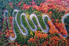 Spolningsväg från passerande för högt berg, i höstsäsong, med den orange skogen arkivbilder