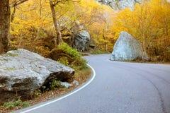 Spolningsväg till och med skog i Stowe, Vermont Royaltyfria Bilder