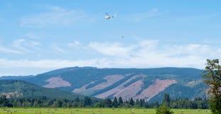 Spolverata del raccolto, cappuccio del supporto, Oregon Fotografia Stock Libera da Diritti