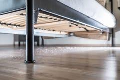 Spolveri sul pavimento di legno sotto il letto Immagine Stock