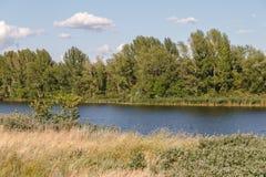 Sponda del fiume Fotografie Stock