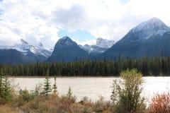 Sponda del fiume di Athabasca Fotografie Stock Libere da Diritti