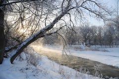 Sponda del fiume di credito Fotografie Stock